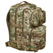 Рюкзак Assault PALS Laser Multicam 20L